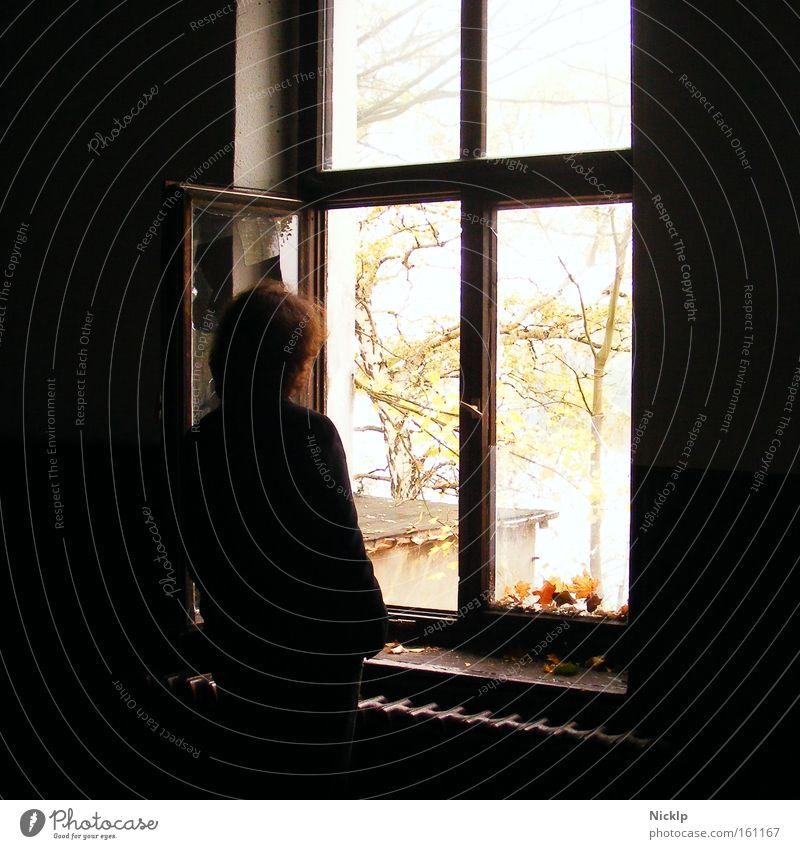In die Ferne schweifen... Mensch Jugendliche ruhig 18-30 Jahre Junger Mann dunkel Fenster Erwachsene Traurigkeit Herbst Denken hell Stimmung träumen