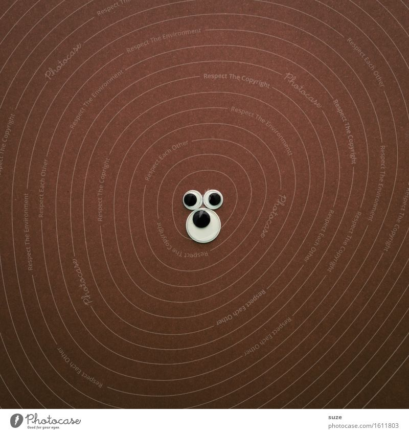 Rund | Erklärbär Tier Auge lustig braun wild Wildtier Kreativität Idee einfach rund graphisch tierisch Phantasie Bär Braunbär Grizzly