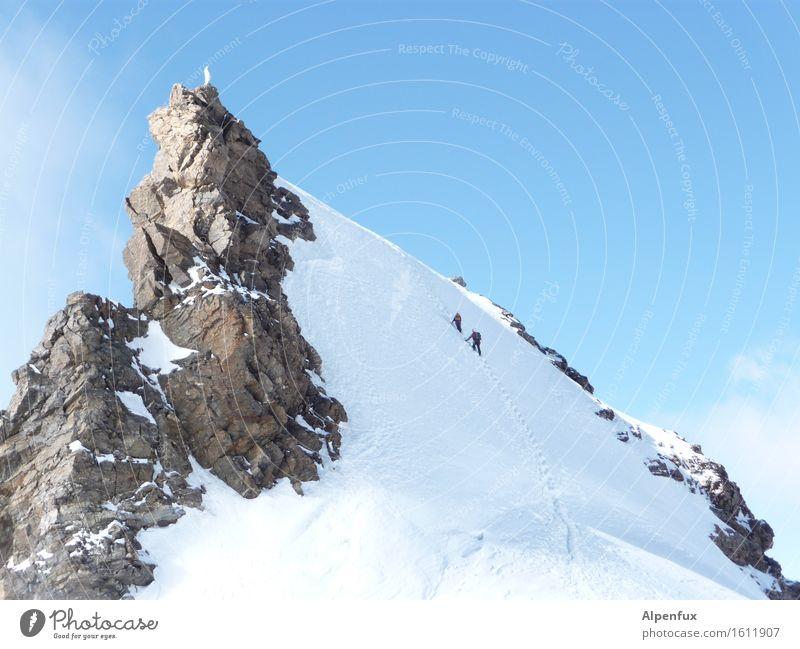 Madonna on Ice Klettern Bergsteigen Winter Schönes Wetter Eis Frost Schnee Hügel Felsen Alpen Berge u. Gebirge Schwarzhorn Monte Rosa Gipfel