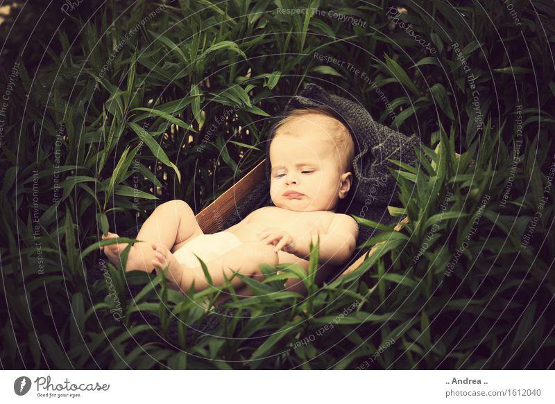 Träumerei im Grünen feminin Kind Baby Kindheit 1 Mensch 0-12 Monate genießen liegen schlafen träumen Glück klein nackt natürlich Neugier braun grün Gefühle