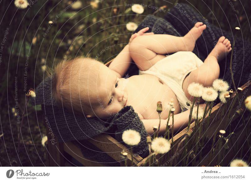 Träumerei im Grünen 2 feminin Kind Baby Kleinkind Mädchen Kindheit 1 Mensch 0-12 Monate beobachten Blühend liegen träumen Traurigkeit verblüht Freundlichkeit