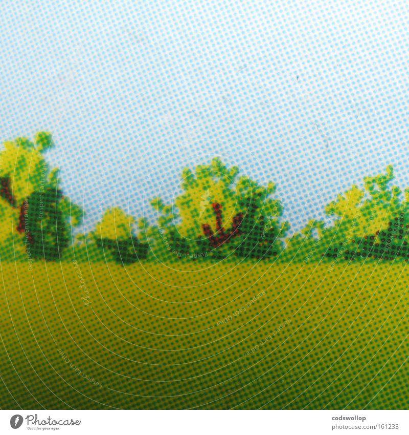 allmende Landschaft Sommer Wiese Raster Baum Feld Wäldchen Landschaftspflege Grafik u. Illustration Druck Makroaufnahme Nahaufnahme auf dem Lande