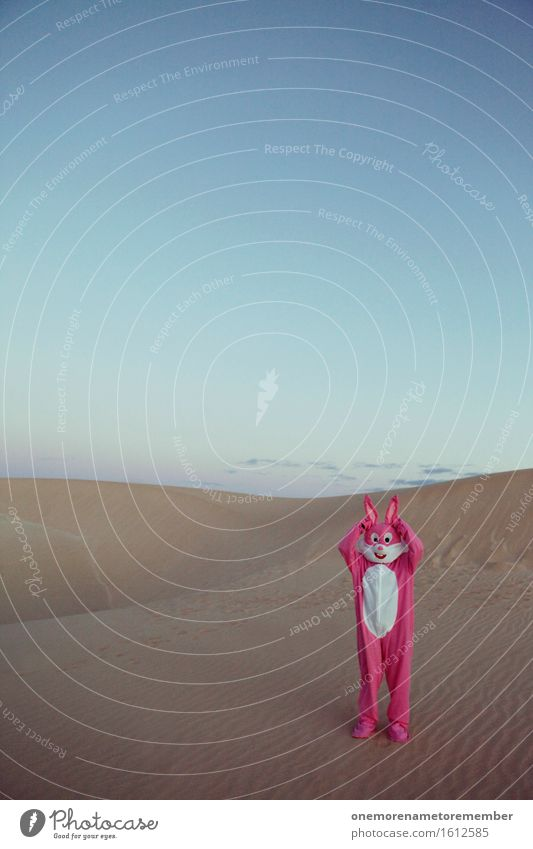 Ohren auf! Kunst Kunstwerk ästhetisch Hase & Kaninchen hören Sand Wüste Freude Unsinn Kostüm verkleidet Farbfoto mehrfarbig Außenaufnahme Experiment