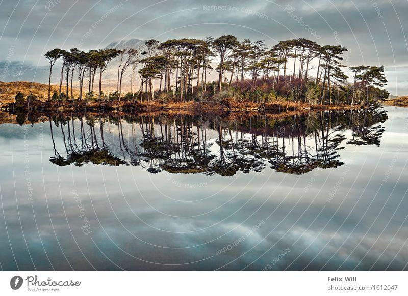 Spiegel Abenteuer Ferne Freiheit Umwelt Natur Landschaft Wolken Schönes Wetter Baum Hügel Seeufer entdecken träumen Unendlichkeit schön Fernweh Einsamkeit