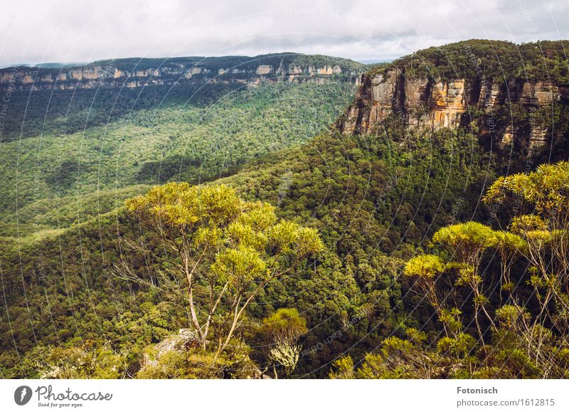 Blue Mountains in Australien Natur Pflanze Landschaft Wolken Berge u. Gebirge Umwelt Felsen Tourismus Urwald Blue mountains