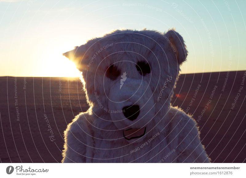 Eisbär macht Urlaub Kunst ästhetisch Profil Selfie weiß Fell Kopf Wärme heiß verirrt Irritation Farbfoto mehrfarbig Außenaufnahme Nahaufnahme Detailaufnahme
