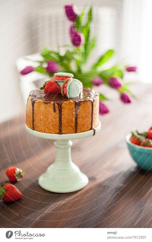 vegan cheesecake and macarons II Dessert Süßwaren Torte Macaron Ernährung Sommer lecker süß Tortenplatte Farbfoto Innenaufnahme Menschenleer Tag Sonnenlicht