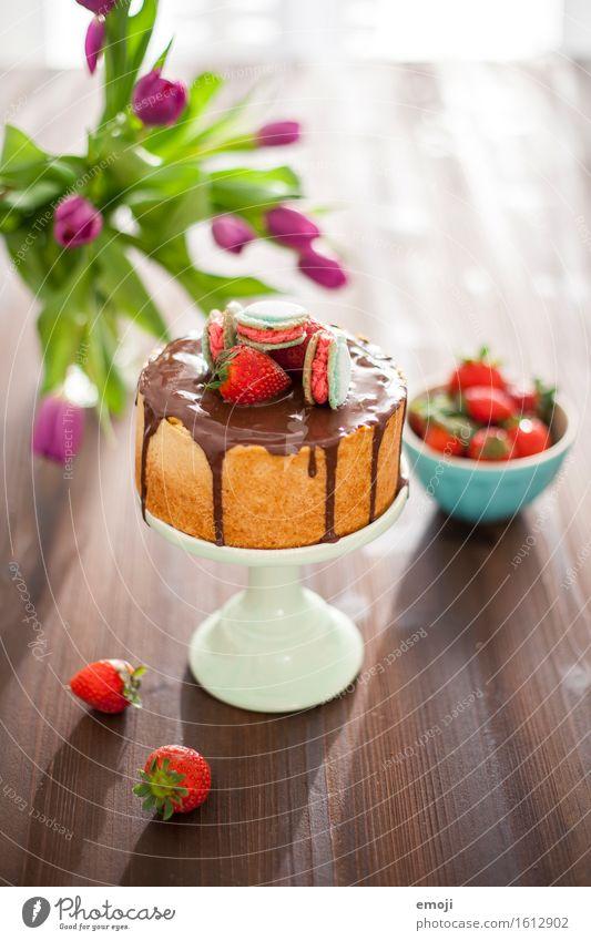 vegan cheesecake and macarons Dessert Süßwaren Torte Erdbeeren Ernährung Vegetarische Ernährung Slowfood Tortenplatte Sommer lecker süß Farbfoto Innenaufnahme