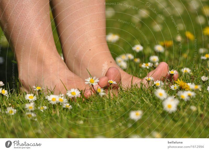 Frühling - ich wär dann soweit! Mensch Frau Natur Jugendliche Pflanze schön Sommer Junge Frau Blume Erholung 18-30 Jahre Erwachsene Leben Blüte Wiese