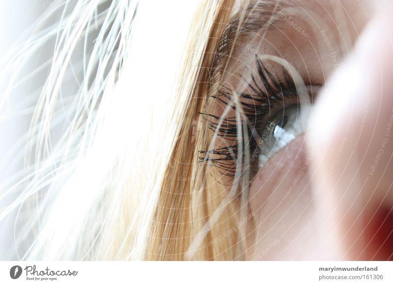 Hebt den Blick! Haare & Frisuren Gesicht Auge Nase blond Hoffnung Religion & Glaube Wimpern Nahaufnahme Makroaufnahme