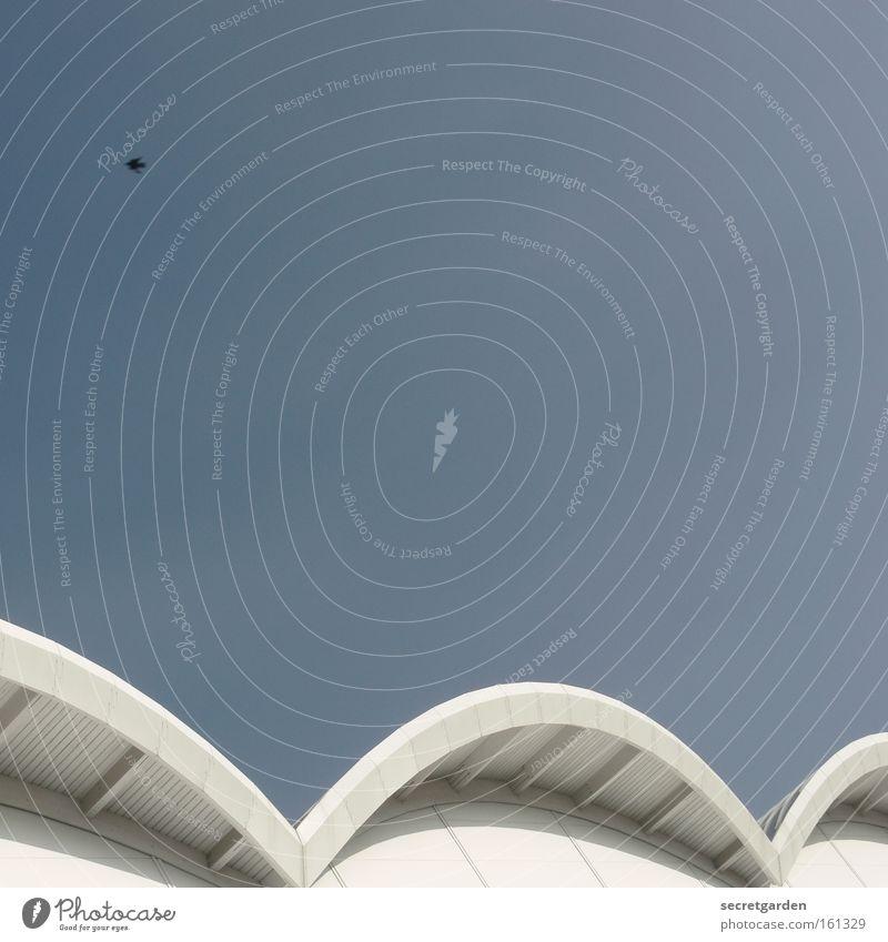 ein himmel über hamburg. Himmel Wolken Vogel weiß hell strahlend Sommer Dach Vordach gekrümmt Geschwindigkeit vergangen Architektur Gottesdienst fliegen
