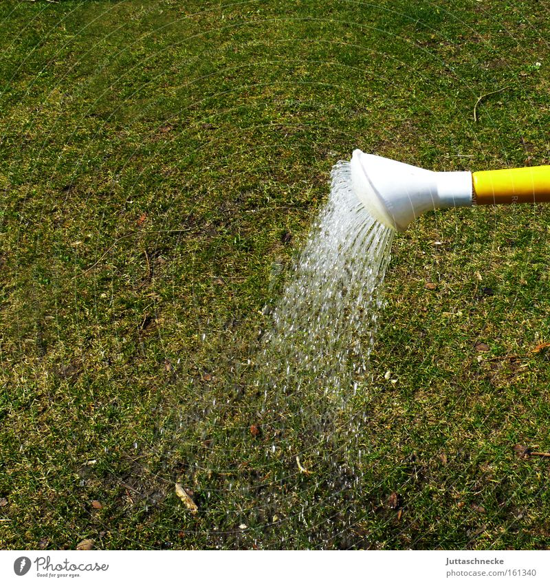 Die Gartensaison hat begonnen Wasser grün Gras Park Rasen Handwerk Strahlung trocken gießen Dürre Kannen Gärtner Gießkanne