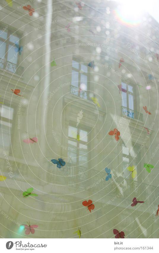 CITY FLYER Schmetterling Sonne Licht Lichtstrahl träumen Feste & Feiern Optimismus Stadt Fenster Freude Lebensfreude mehrfarbig Lichtpunkt Karneval Illusion