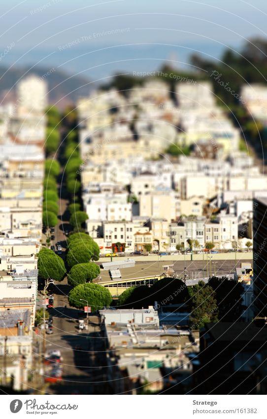 little San Francisco Baum Stadt Haus Straße PKW klein KFZ USA Aussicht Spielzeug Amerika Verkehrswege Stadtteil Reaktionen u. Effekte Kalifornien Tilt-Shift