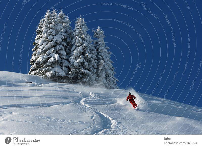Skiparadies Winter Schnee Sport Spielen Landschaft Tourismus Schneelandschaft Wintersport Skigebiet Neuschnee Österreich Tiefschnee Pulverschnee Bundesland Vorarlberg Bregenzerwald Skispur