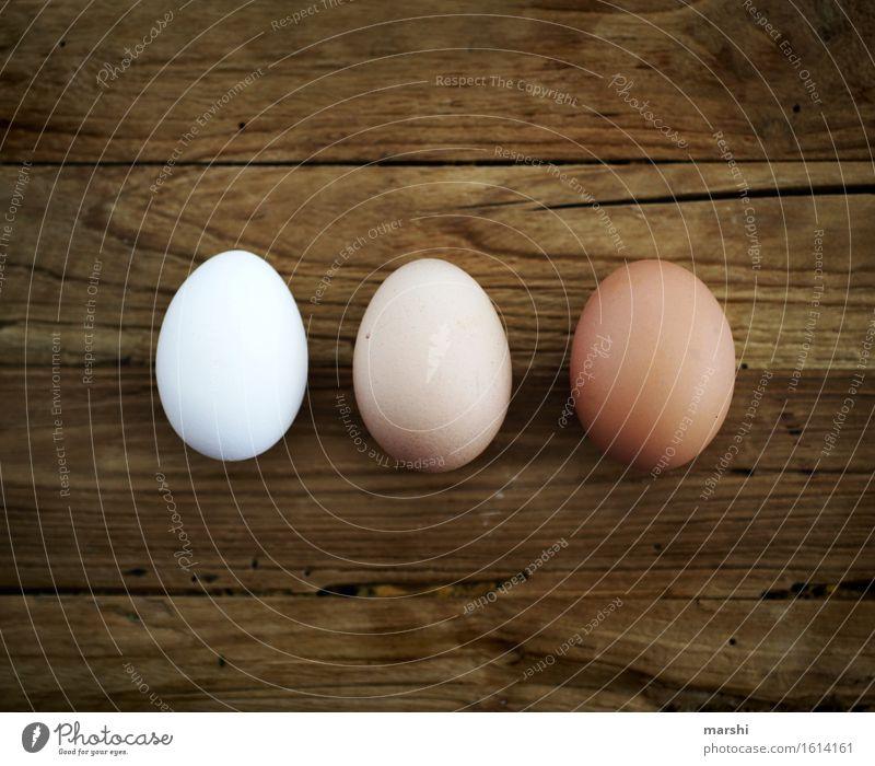 dreierlei Lebensmittel Ernährung Stimmung Ei Hühnerei 3 Eierschale Ostern Cholesterin Farbfoto Innenaufnahme Detailaufnahme