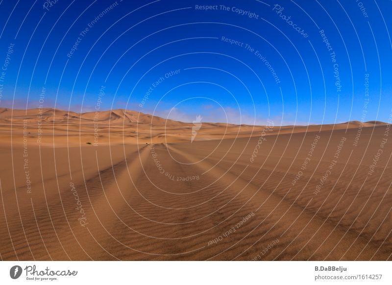 Spuren Ferien & Urlaub & Reisen Abenteuer Ferne Freiheit Safari Expedition Landschaft Sand Himmel Horizont Wärme Dürre Hügel Wüste ästhetisch exotisch blau