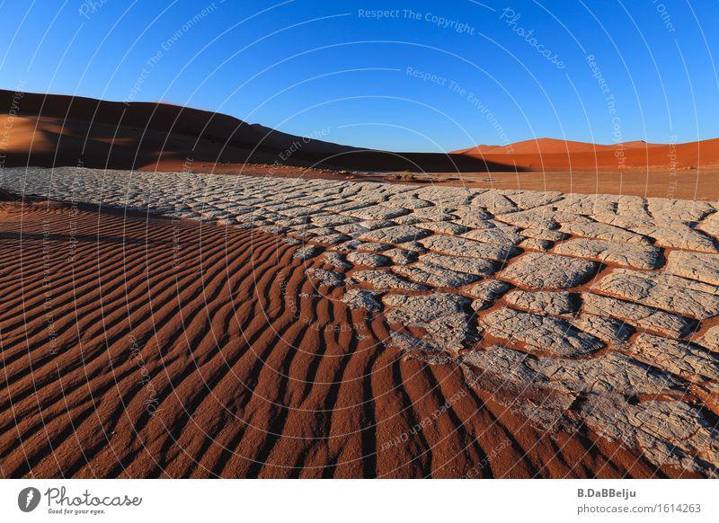 Wüstenmorgen Ferien & Urlaub & Reisen Ausflug Abenteuer Ferne Freiheit Expedition Sommer Sommerurlaub Sonne Natur Landschaft Erde Sand Horizont Wärme Dürre rot