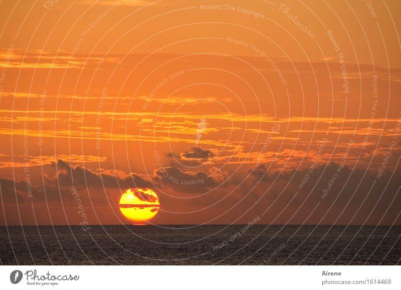 Caprisonne Himmel Natur schön Wasser Sonne Meer rot Wolken gelb natürlich Stimmung orange glänzend Luft gold ästhetisch