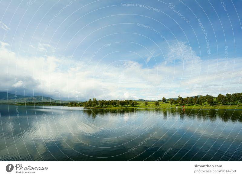 Harmonie Himmel Natur Pflanze Wasser Erholung Landschaft Einsamkeit ruhig Tier Umwelt Leben Gesundheit See Zufriedenheit Wetter ästhetisch