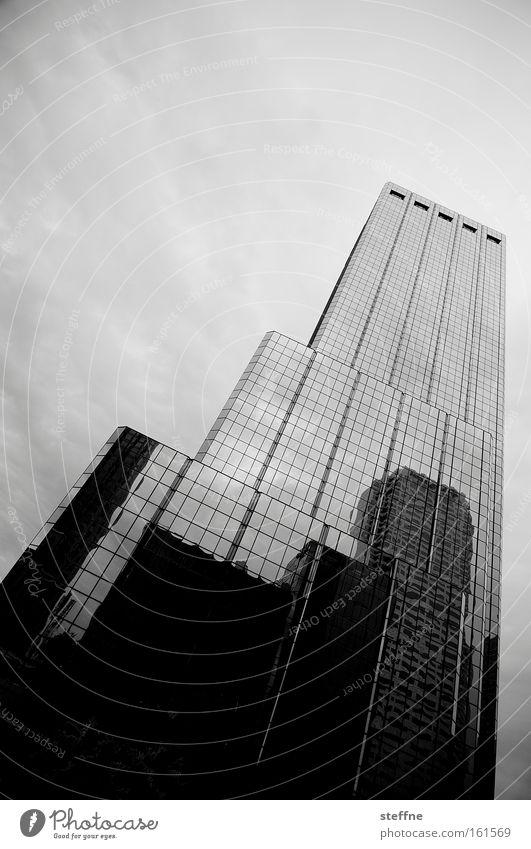 Teleskophaus Haus Hochhaus Skyline Stadtzentrum Tampa schwarz weiß bedeckt hoch Glas Glasfassade USA