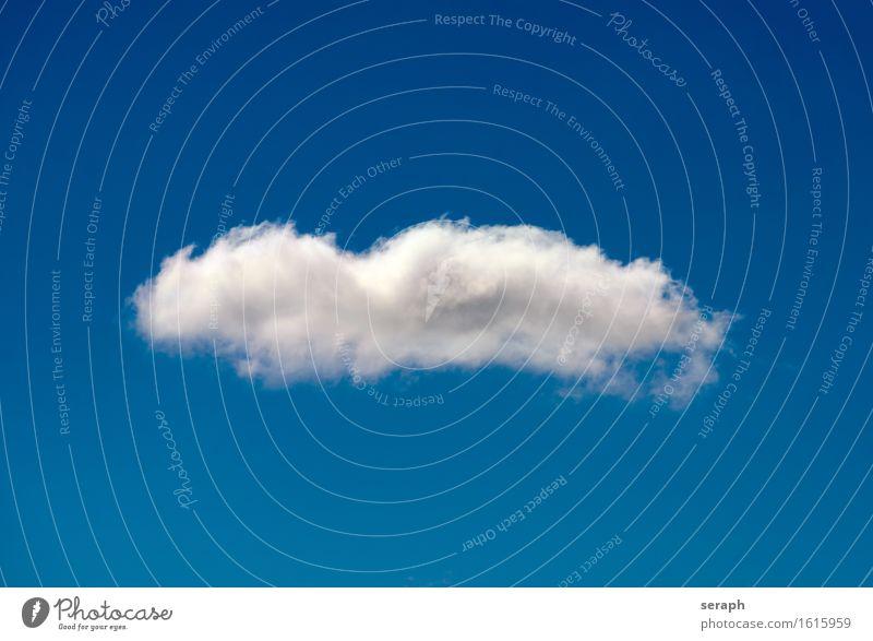 Wölkchen Wolken Kumulus Himmel Wasserdampf kondensieren Luft luftig leicht soaring aufsteigen Schweben Leichtigkeit frei fluffig Troposphäre Atmosphäre