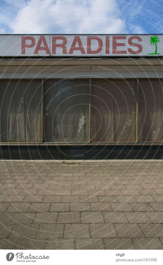 Paradies auf Erden Himmel Stadt Haus Wolken Straße Fenster Traurigkeit Glas Hoffnung trist verfallen Palme Verkehrswege Vorhang Fensterrahmen