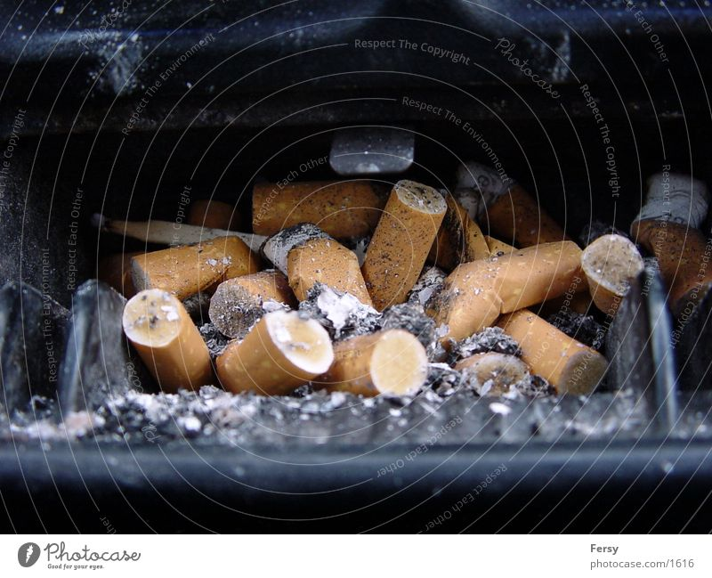smokedesaster Nikotin Zigarette Club Rauch trashig Zigarettenstummel