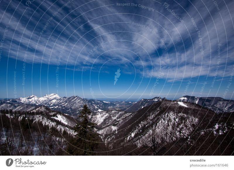 Voralpen Himmel Baum Winter Wolken Schnee Berge u. Gebirge groß Alpen Aussicht Baumkrone Österreich Tal Wäldchen