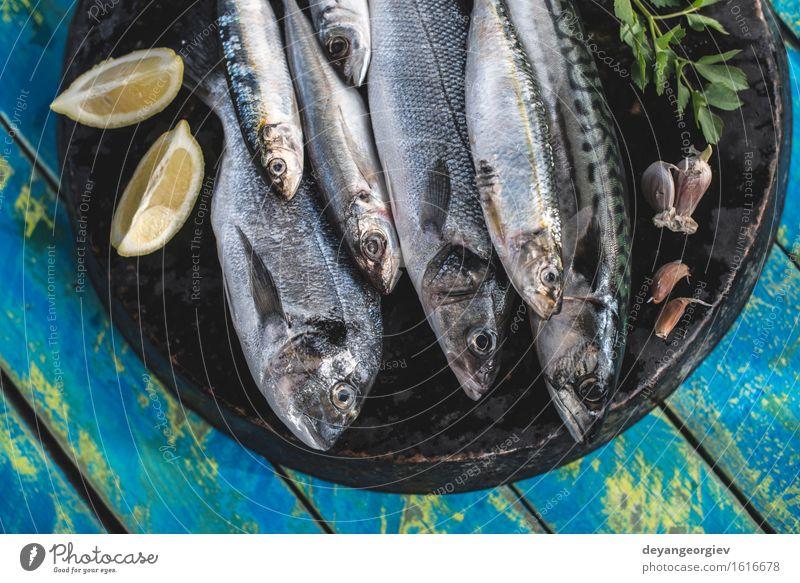 Roher Fisch. Dorade, Wolfsbarsch, Makrele und Sardinen Meeresfrüchte Mittagessen Pfanne Koch frisch blau schwarz Zitrone roh Fett Zutaten Mahlzeit Speise