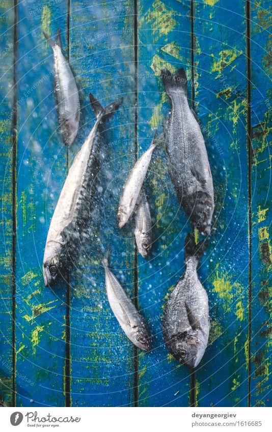 Fisch waschen. Seebrassen, Wolfsbarsch Meeresfrüchte Mittagessen Pfanne Koch frisch blau schwarz Zitrone roh Fett Makrele Zutaten Sardinen Mahlzeit Speise