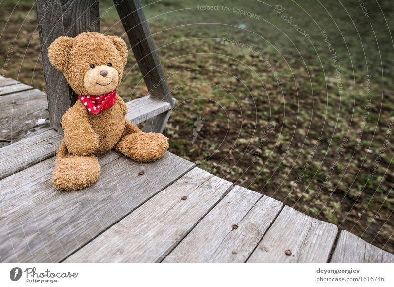 Natur grün Erholung Einsamkeit Liebe Garten braun Freundschaft Park sitzen Kindheit retro Baby Geschenk niedlich Spielzeug