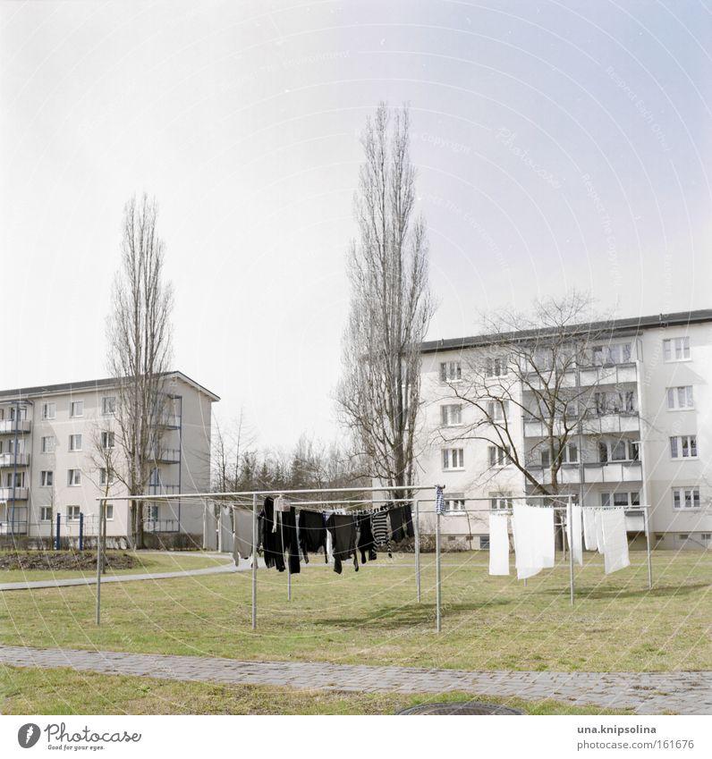 wasch.tag Stadt Baum Haus Wiese Bekleidung neu Wäsche waschen trocknen Waschtag Waschmaschine Frühjahrsputz