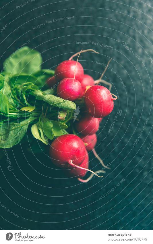 urban gardening frische bio radieschen Lebensmittel Gemüse Radieschen Bioprodukte Biologische Landwirtschaft selbstversorgung frei selbstversorger Ernährung
