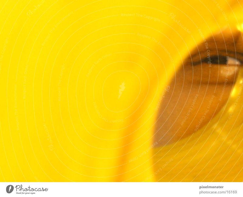 da guckst du in die Mensch Auge gelb