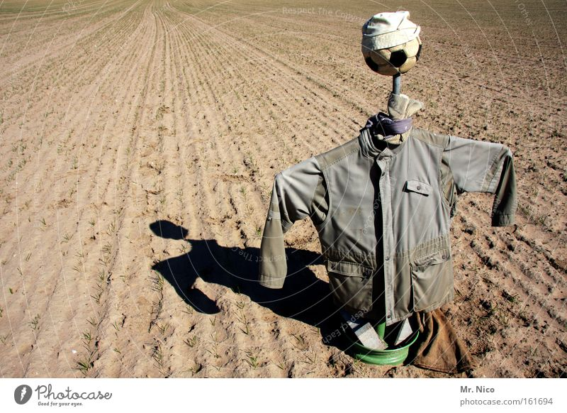 das letzte hemd Landwirtschaft Forstwirtschaft Umwelt Natur Erde Feld Hemd Jacke hässlich grau Angst Aussaat Vogelscheuche Kittel Kopfbedeckung abgeschreckt