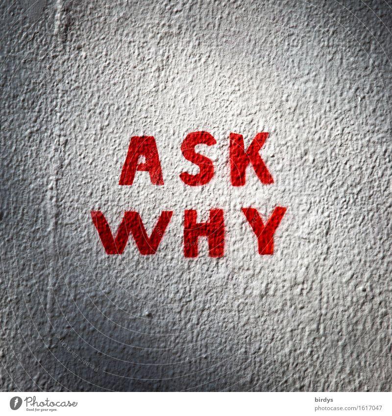 Warum denn ? Wand Graffiti Mauer außergewöhnlich grau authentisch ästhetisch Schriftzeichen einfach Kontrolle Fragen Scham Politik & Staat Motivation rebellisch