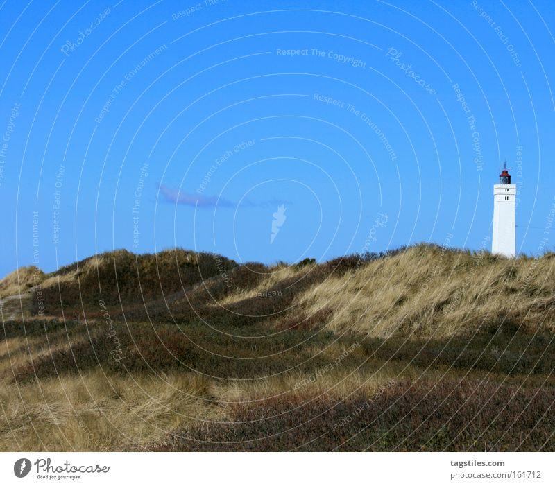 LEUCHTTURM VON Blåvandshuk Himmel Pflanze Sommer Strand Ferien & Urlaub & Reisen Erholung Gras Europa Freizeit & Hobby Denkmal Stranddüne Düne Wahrzeichen