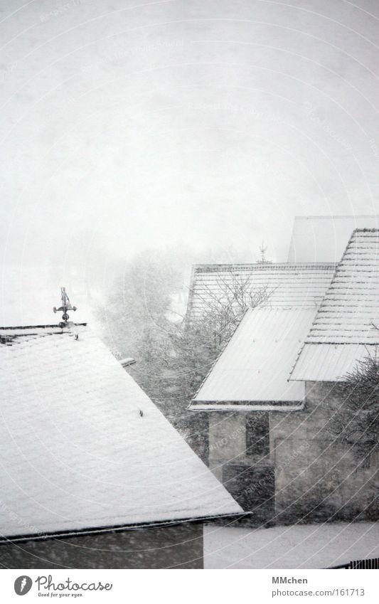 ByeBye Winterzeit weiß Winter kalt Schnee Schneefall Traurigkeit Nebel Frost Dach Bauernhof Verkehrswege Scheune Hof Schneeflocke Eifel