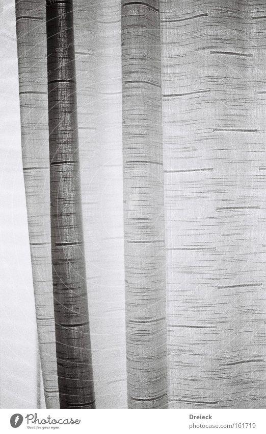 grainy curtain Gardine Stoff Fenster schwarz weiß analog Schwarzweißfoto Vorhang Schutz Dinge Fototechnik Häusliches Leben black white Filmindustrie 35mm b&w