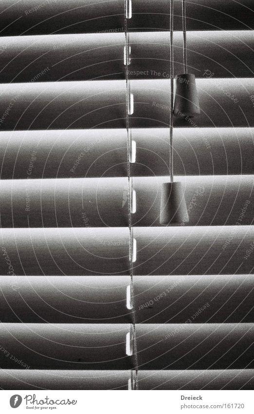 zugtechnik Jalousie Rollo Lamellenjalousie Fenster schwarz weiß analog Schwarzweißfoto Häusliches Leben Dinge Fototechnik window shade shutter black white
