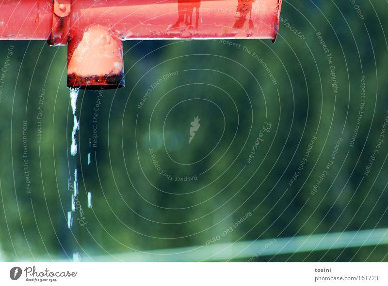 abtropfen Wasser grün rot Winter Frühling Hintergrundbild Wetter Wassertropfen Tropfen Abfluss Wasserrinne schmelzen Regenrinne Schmelzwasser