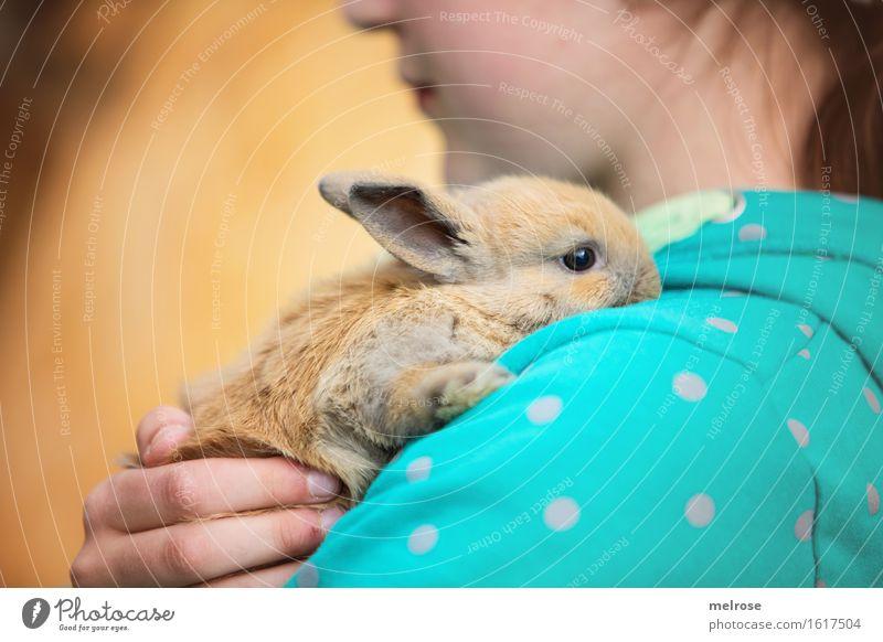 Wohlfühloase Mensch Kind Hand Erholung Tier Mädchen Gesicht Tierjunges braun gold Kindheit Arme genießen Mund Finger niedlich