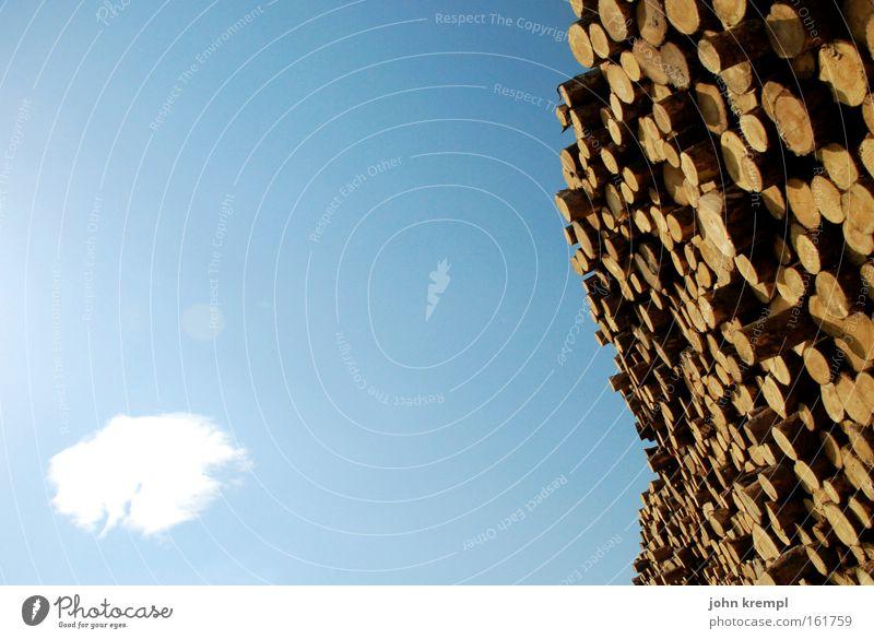 viel holz vor der hütte Himmel blau Baum Wolken Holz Baumstamm Forstwirtschaft Holzwand Holzstapel Säge Baumstumpf Sägewerk