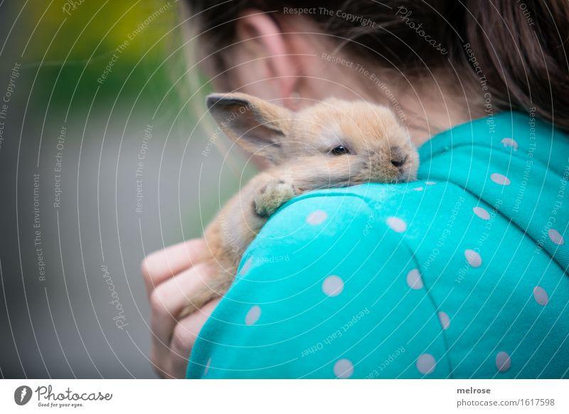 R Ü C Kblick Mädchen Kopf Haare & Frisuren Finger Schulter 1 Mensch 8-13 Jahre Kind Kindheit Garten Haustier Tiergesicht Fell Pfote Zwergkaninchen Hasenlöffel
