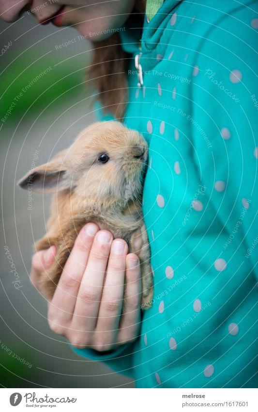 F R E U N D E Mensch Kind Hand Erholung Tier Mädchen Gesicht klein braun Zusammensein Tierpaar sitzen Kindheit genießen Finger niedlich