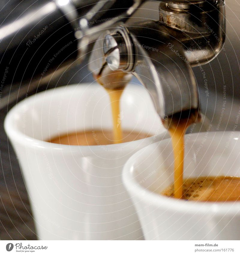 espresso 3 Wärme braun Lebensmittel Energiewirtschaft Ernährung Kaffee Kochen & Garen & Backen Bar Italien Gastronomie heiß Café genießen Espresso Feinschmecker Lokal