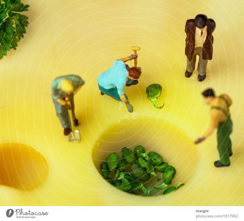 Miniwelten - Käsepflanzung grün gelb Lebensmittel Dienstleistungsgewerbe Arbeitsplatz Gartenarbeit Handwerker