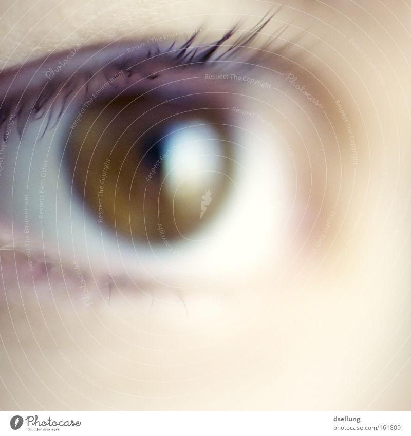 unscharfes Auge in braun einer weiblichen Person Farbfoto Nahaufnahme Detailaufnahme Makroaufnahme Textfreiraum unten Schwache Tiefenschärfe Zentralperspektive