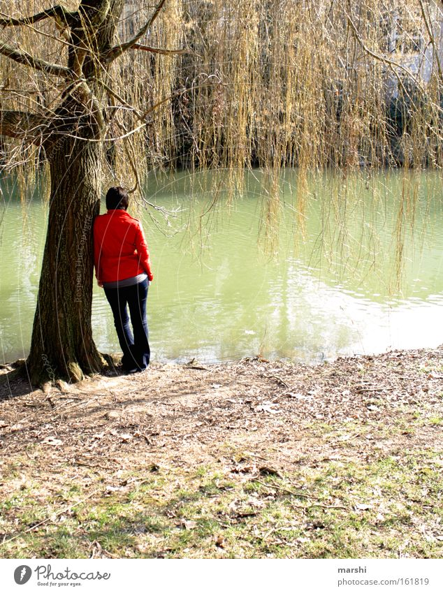 die mit der roten Jacke Frau Mensch Natur Wasser Pflanze rot Tier Erwachsene Ferne Erholung Wiese Gefühle Küste Traurigkeit Denken Frühling